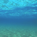 imagen tomada desde debajo del agua